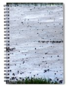 Pick A Side Spiral Notebook