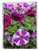 Pick Purple Spiral Notebook