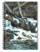 Picnic At The Falls Spiral Notebook