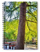 Picnic By The Cypress Spiral Notebook