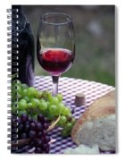 Picnic In The Park Spiral Notebook