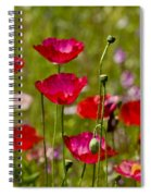 Picture Perfect Too Spiral Notebook