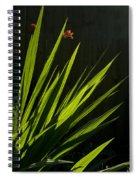 Piercing Green Spiral Notebook