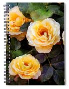 Pierre's Peach Roses Spiral Notebook