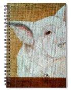 Pig Smile Spiral Notebook