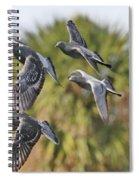 Pigeon Brigade Spiral Notebook