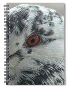 Pigeon Close-up Spiral Notebook
