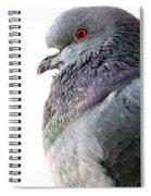 Pigeon Portrait Spiral Notebook