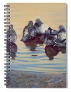 Pigeon Talk Spiral Notebook
