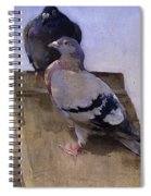 Pigeons On The Roof Spiral Notebook