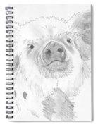 Piglet   Spiral Notebook