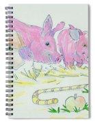 Pigs Cartoon Spiral Notebook