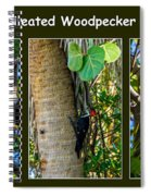 Pileated Woodpecker Spiral Notebook