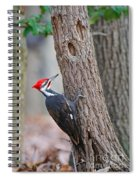 Pileated Woodpecker On Tree Spiral Notebook