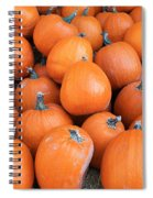 Piles Of Pumpkins Spiral Notebook