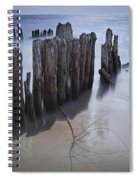Pilings On The Beach Along A Lake Michigan Shore Spiral Notebook