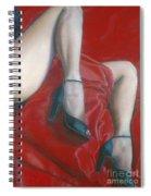 Pillow Spiral Notebook