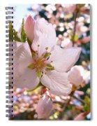 Pin Cherry Blooms Spiral Notebook