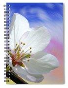 Pin Cherry Swirl Spiral Notebook