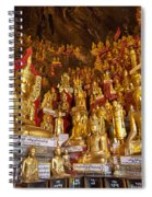 Pindaya Cave With More Than 8000 Buddha Statues Myanmar Spiral Notebook