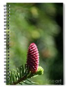 Pine Candle Spiral Notebook