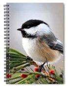 Pine Chickadee Spiral Notebook