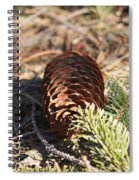 Pine Cone And Small Branch Spiral Notebook