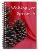 Pine Cones For The Holidays Spiral Notebook