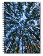 Pine Explosion Spiral Notebook