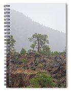 Pine On Lava Spiral Notebook