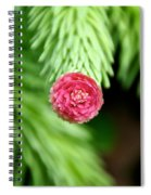 Pine Perfection Spiral Notebook