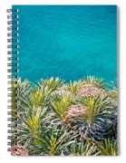 Pine Tree Branches With Turquoise Sea Background Spiral Notebook