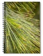 Pine Tree Needles Spiral Notebook