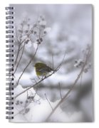 Pine Warbler In The Snow - Better Than Red Spiral Notebook