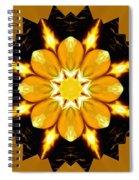 Pineal Breakthrough Spiral Notebook