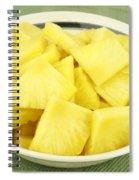 Pineapple Chunks Spiral Notebook