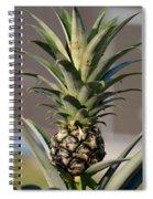 Pineapple Express Spiral Notebook