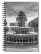 Pineapple Fountain In Black And White Spiral Notebook