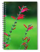 Pineapple Sage Spiral Notebook