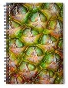 Pineapple Skin Spiral Notebook