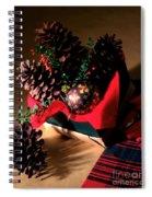 Pinecones Christmasbox Spiral Notebook