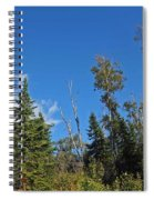 Pines In The Sky Spiral Notebook