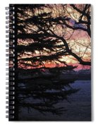 Piney Sunset Spiral Notebook