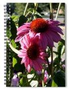 Pink 2 Spiral Notebook