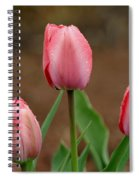 Pink And Perfect Spiral Notebook