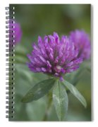 Pink And Pretty Clover Spiral Notebook