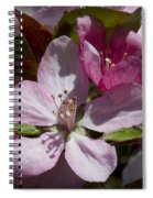 Pink And Pretty Spiral Notebook