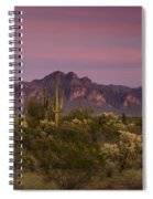 Pink And Purple Skies  Spiral Notebook