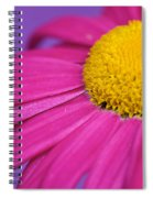 Pink And Purple Smile Spiral Notebook