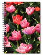 Pink And Red Ruffly Tulips Square Spiral Notebook